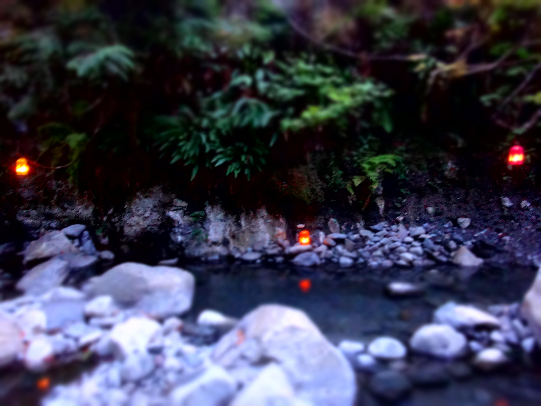 Sloquet Hot Springs Bc August 2015 Quot Dream Commit